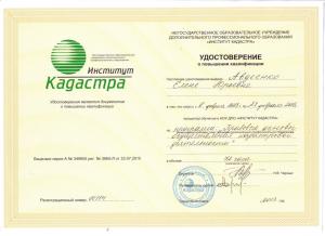 Сертификат Авдеенко