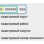 Структура кадастрового номера объекта недвижимости